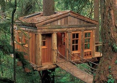 Casa di legno a due piani costruita sugli alberi in for Case in legno sugli alberi